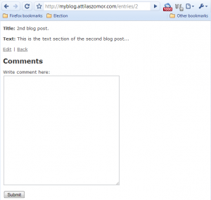 Comment form appearing on entry page